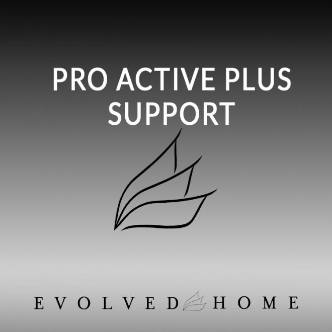 Pro Active Plus Support