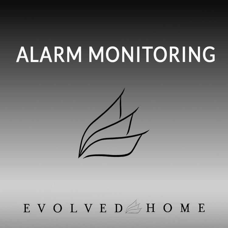 Alarm monitoring
